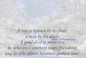 A tree is known by its fruit; a man by his deeds. A good deed is never lost; he who sows courtesy reaps friendship, and he who plants kindness gathers love.Saint Basil