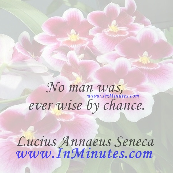 No man was ever wise by chance.Lucius Annaeus Seneca