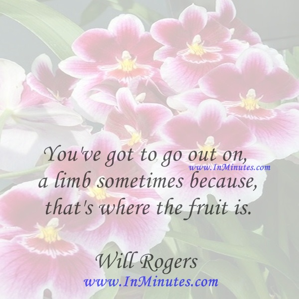 You've got to go out on a limb sometimes because that's where the fruit is.Will Rogers
