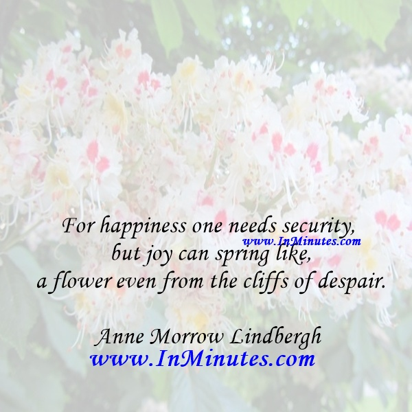 For happiness one needs security, but joy can spring like a flower even from the cliffs of despair.Anne Morrow Lindbergh
