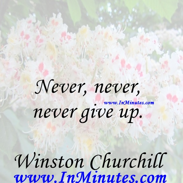 Never, never, never give up.Winston Churchill