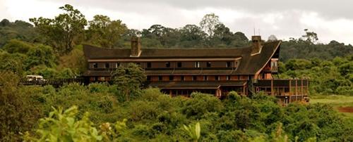 Aberdare National Park  Popular National Parks in Kenya