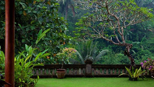Ubud Beautiful Places in Indonesia