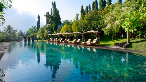 Ubud  Best Places to Visit in Bali