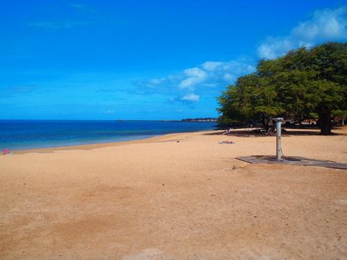 Best Beaches in Hawaii  Samuel Spencer Beach Park