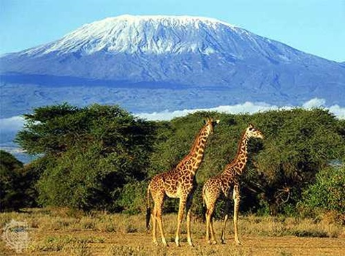 Photo of Top Beautiful Destinations in Africa