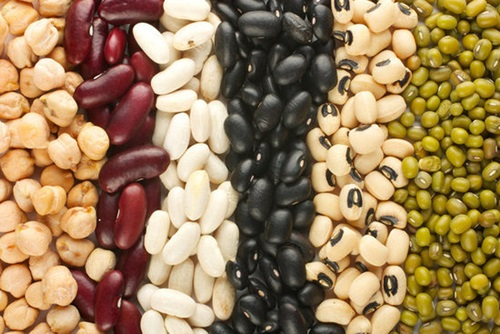 8 Unconventional Protein Sources and Tips to Add More Protein to Your Diet
