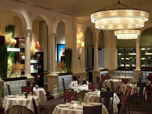 Photo of Best Restaurants in New York: Fabulous for Special Occasions