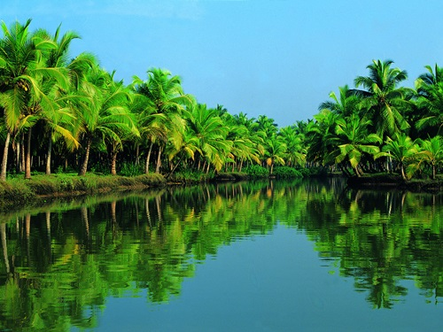 Photo of The Tourist's Manual to the Best Places to See in Kerala