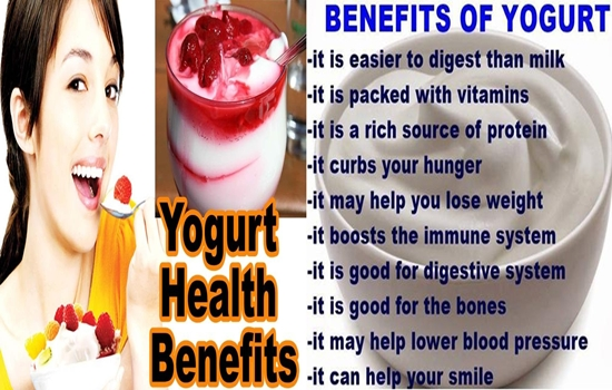 Photo of Amazing Health Benefits Of Greek Yogurt