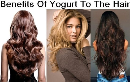 Benefits Of Yogurt To The Hair
