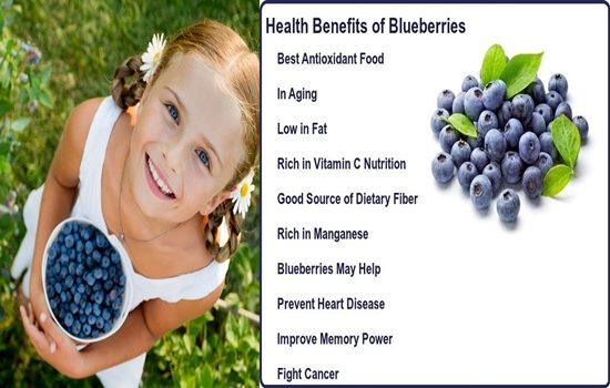 Photo of Top Five Health Benefits Of Blueberries