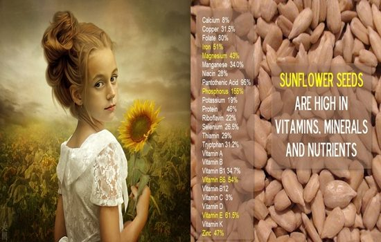 Photo of Six Health Benefits Of Sunflower Seeds