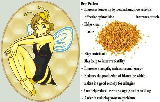 Photo of 10 Wonderful Health Benefits of Bee Pollen