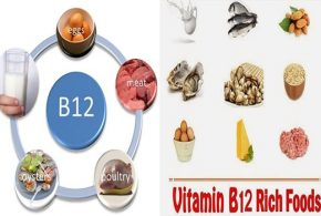 The Importance Of Vitamin B12 and The Richest Foods With It