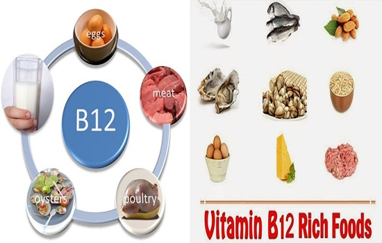 Photo of The Importance Of Vitamin B12 and The Richest Foods With It