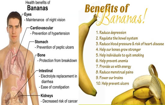 Benefits and Risks of Bananas You Should Know