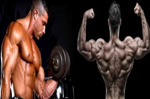 Important Tips for Building Strong Muscles