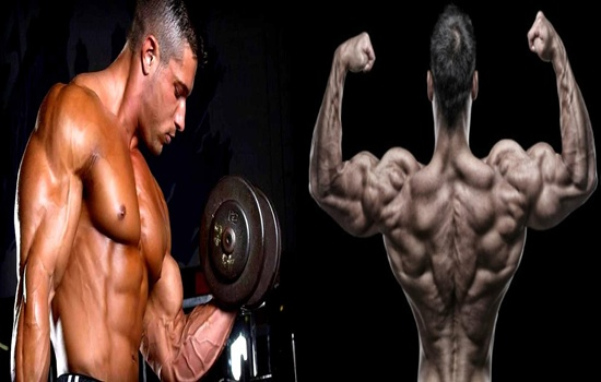 Photo of 4 Important Tips for Building Strong Muscles