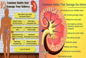 Top 10 Habits that Damage Your Kidneys
