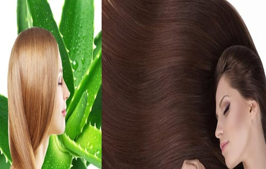 Photo of Treating Your Hair With Aloe Vera