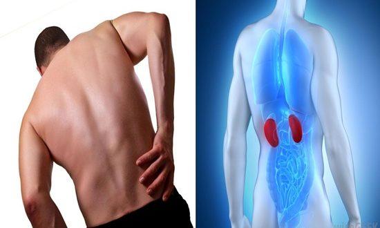 Signs A Kidney Disease