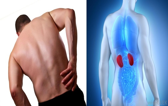 Signs A Kidney Disease