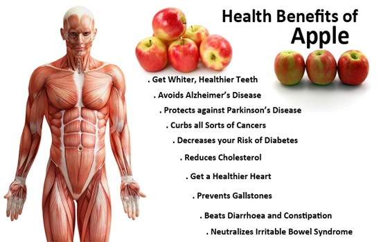 Photo of IS IT TRUE THAT EATING AN APPLE A DAY KEEPS THE DOCTOR AWAY?