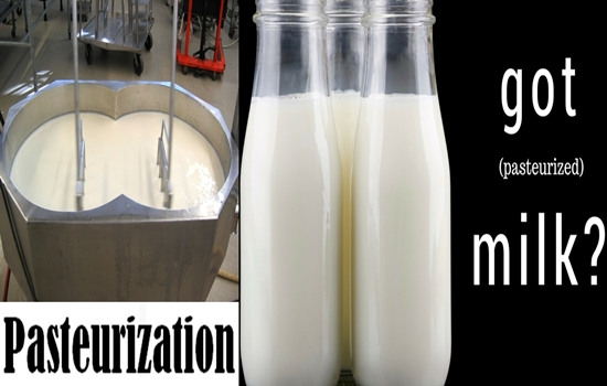 Photo of Health Benefits and Threats of Drinking Pasteurized Milk