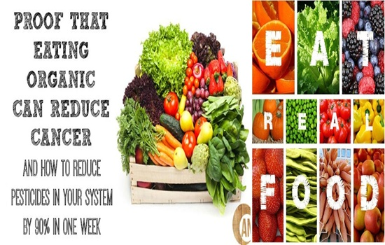 ORGANIC FOOD AND HOW HEALTHIER IT IS FOR YOU AND YOUR FAMILY