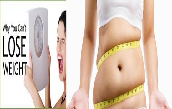 Photo of 8 Reasons Why You Can't lose weight