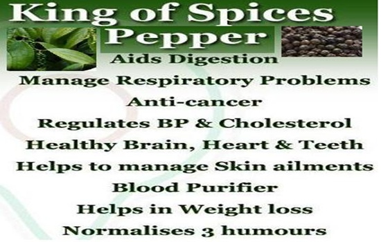 Photo of MORE ABOUT THE HEALTH BENEFITS OF BLACK PEPPER, PART II