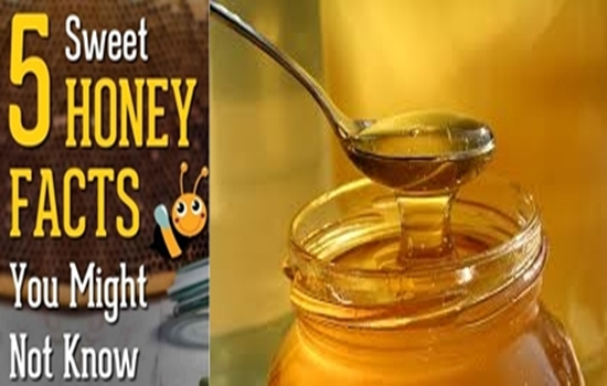 Photo of The top 5 health benefits of honey