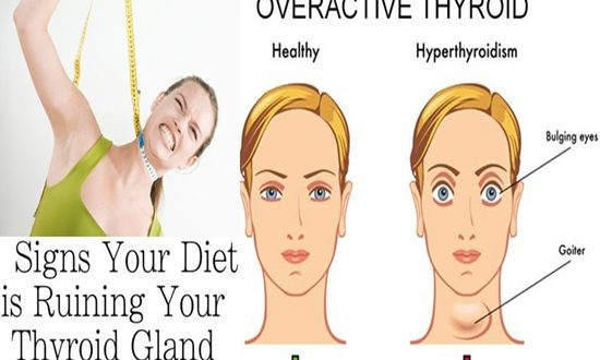 Dieting Can Destroy Your Thyroid Gland