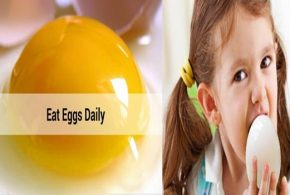 7 Reasons Why You Should Eat Eggs Daily