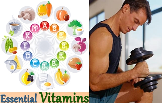 Photo of The Job and The Best Sources Of Ten Essential Vitamins