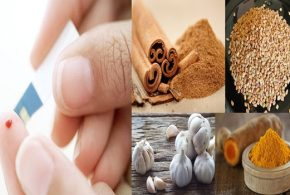 Most Recommended Herbs For Diabetics