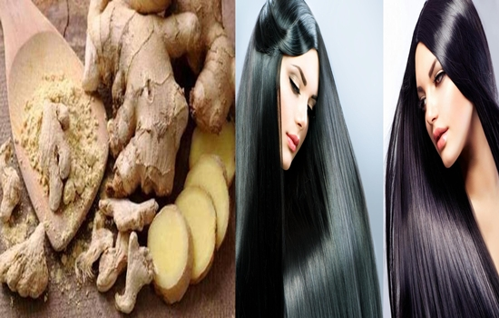 Photo of Increase Your Hair's Volume, Length, Strength, Softness and Shininess With Ginger.