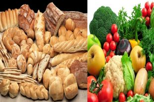 Essential Facts You Must Know About Carbohydrates.