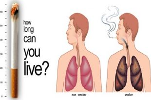 The Effect Smoking Tobacco Has On Your Different Body Systems