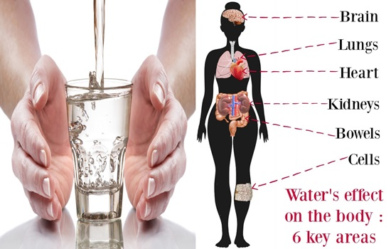 Photo of What A Glass Of Water Does To Our Body? You Will Be Amazed