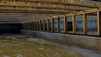 Photo of 3 Common Issues with Damaged Crawl Spaces